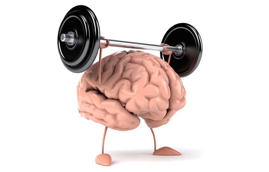 healthy brain food 4355646 - کدام مواد غذایی برای مغز مفید است؟