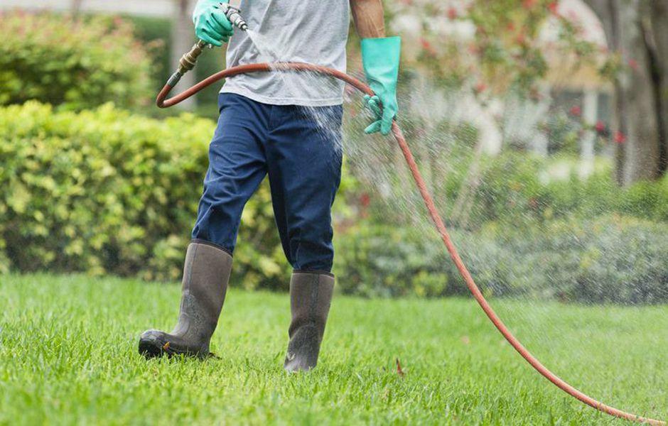 how to keep mosquitoes away 43554758 - چگونه از دست پشهها در امان باشیم؟