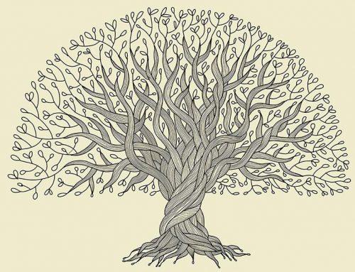 چگونه درخت شجره نامه خانوادگی بکشیم؟