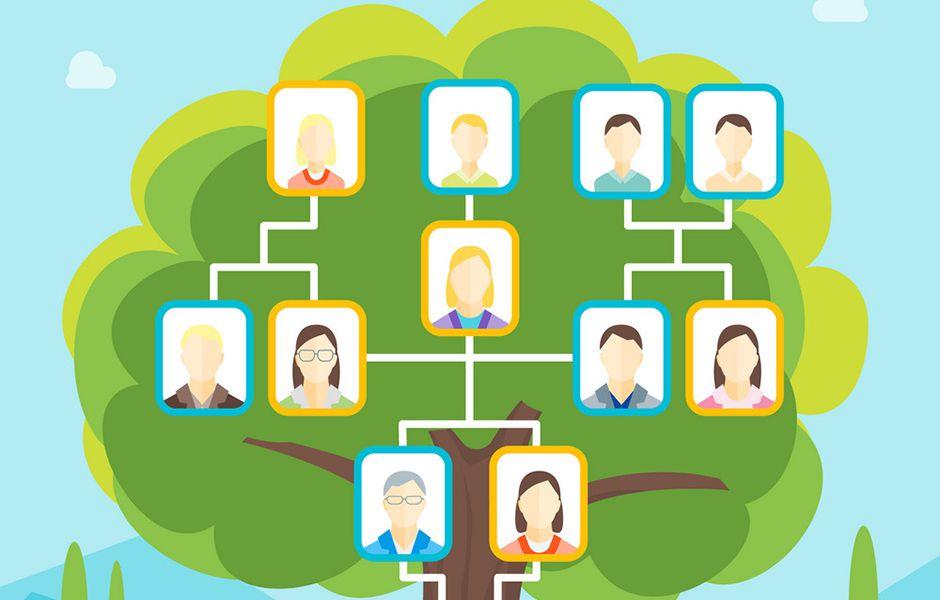 how to draw a family tree 45464577 - چگونه درخت شجره نامه خانوادگی بکشیم؟
