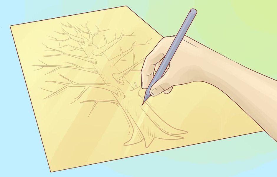 how to draw a family tree 4567758 - چگونه درخت شجره نامه خانوادگی بکشیم؟