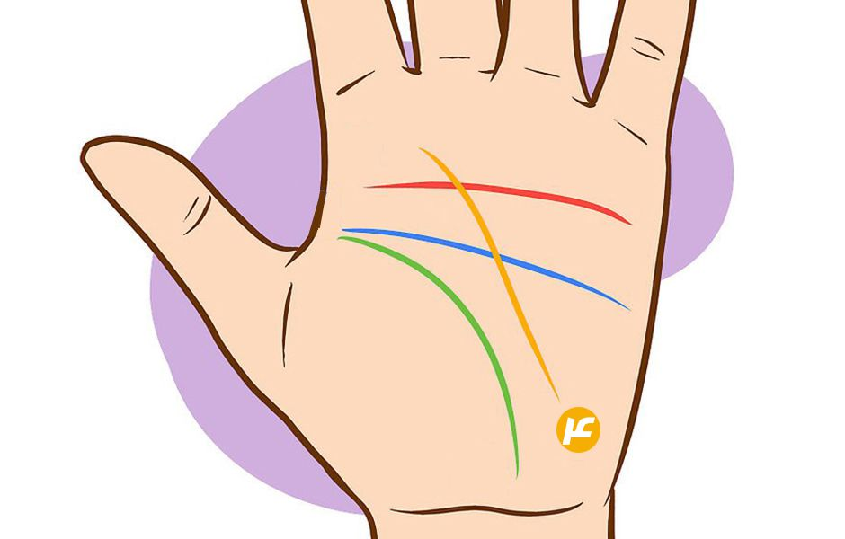 how to read palms 454536 - چگونه کف بینی کنیم؟