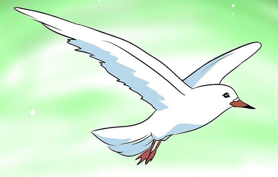 how to fly in dreams 57676577 - چگونه در خواب پرواز کنیم؟